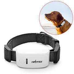 GPS трекер-ошейник для собак TKSTAR TK909