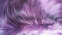 Мех яка натуральный фиолетовый