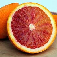 Апельсин красный (C. sinensis Sanguinello Moscato Nucellare) до 20 см. Комнатный, фото 1