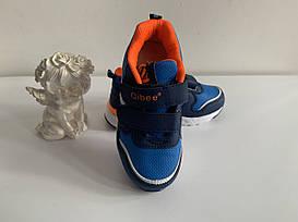 Дитячі кросівки для хлопчика Clibee Польща розміри 31-36