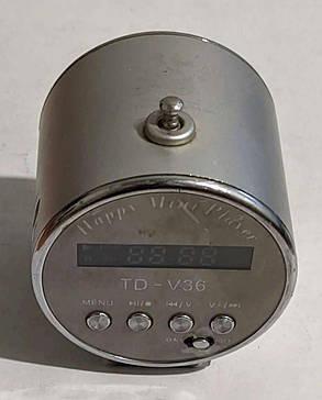 Портативна колонка, радіоприймач (USB/SD/FM) TD V-36, фото 2