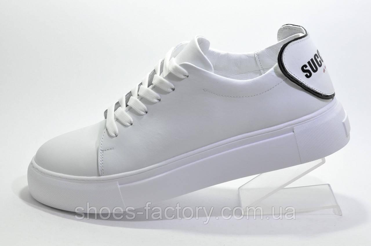 Женские белые кожаные кеды Ditas, White