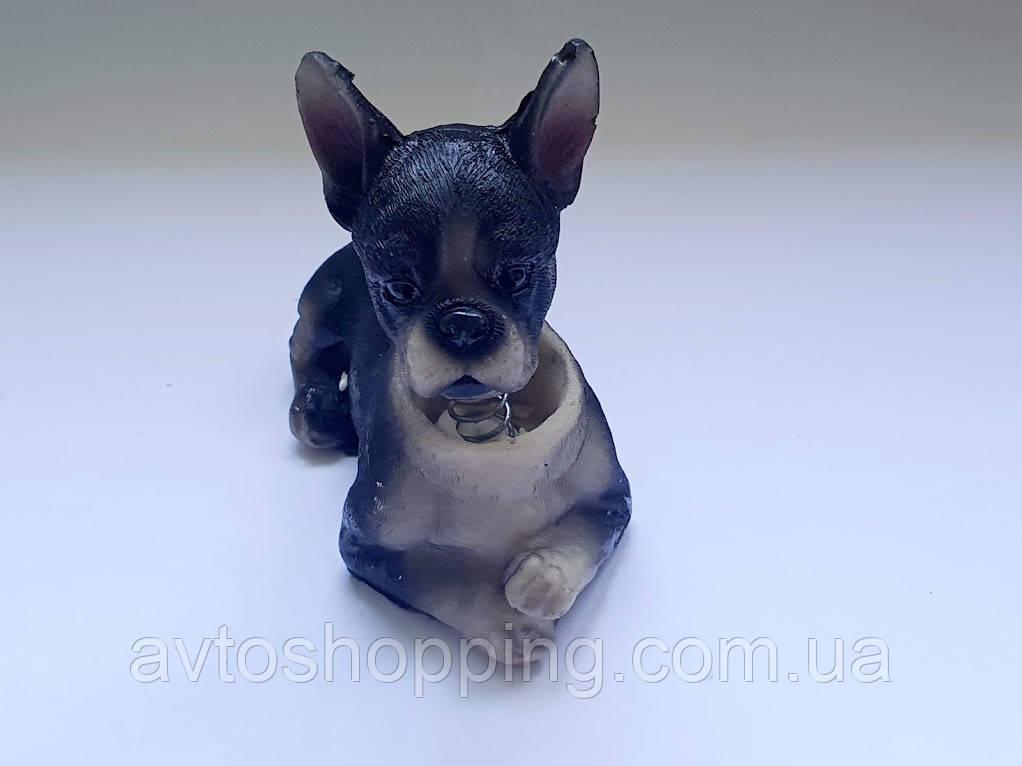 Собака собачки в автомобиль ЧИХУАХУА с кивающей головой ! На торпеду! КАЧЕСТВО!