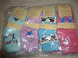 Носки детские демисезонные бамбук ,,Золото,,для девочек 26-29, фото 3