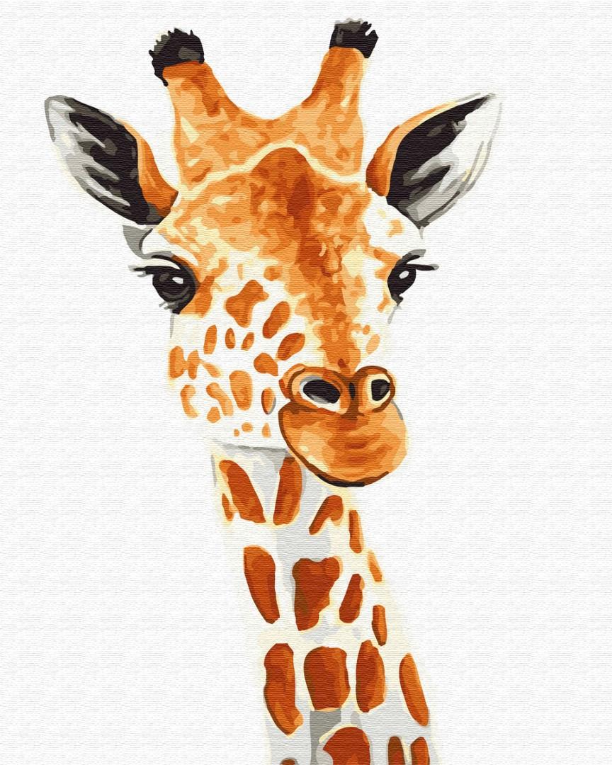 Картина по номерам - Жираф 40*50 см.