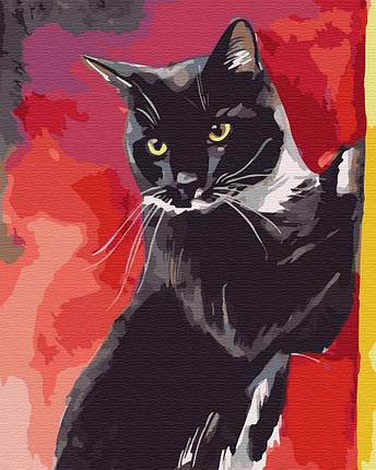 Картина за номерами - Містер Кіт Brushme 40*50 див. (GX32337), фото 2