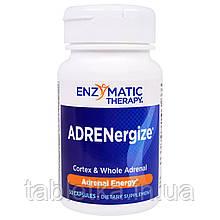 Enzymatic Therapy, ADRENergize, енергія надниркових залоз, 50 капсул