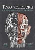 Книга Тело человека. Интерактивная книга-панорама. Автор - Ричард Уолкер