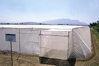 Защитная сетка от насекомых ANTIAFIDE 16