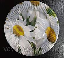Тарелка картонная  ламинированная с рисунком (d - 19 см, 10 шт)