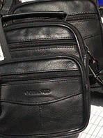 Стильная мужская кожаная (кожа натуральная) сумка в руку и через плечо Gorangd