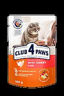 Консерви Клуб 4 лапи для кішок з індичкою в желе, 100 г/24шт