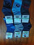 Носки детские хлопковые, мальчик   L ( 31-36) с рисунками, фото 3