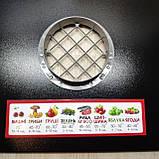 Сушилка для овощей фруктов грибов и ягод ПРОФИТ-М 35 Литров металлическая сушка сушарка, фото 6