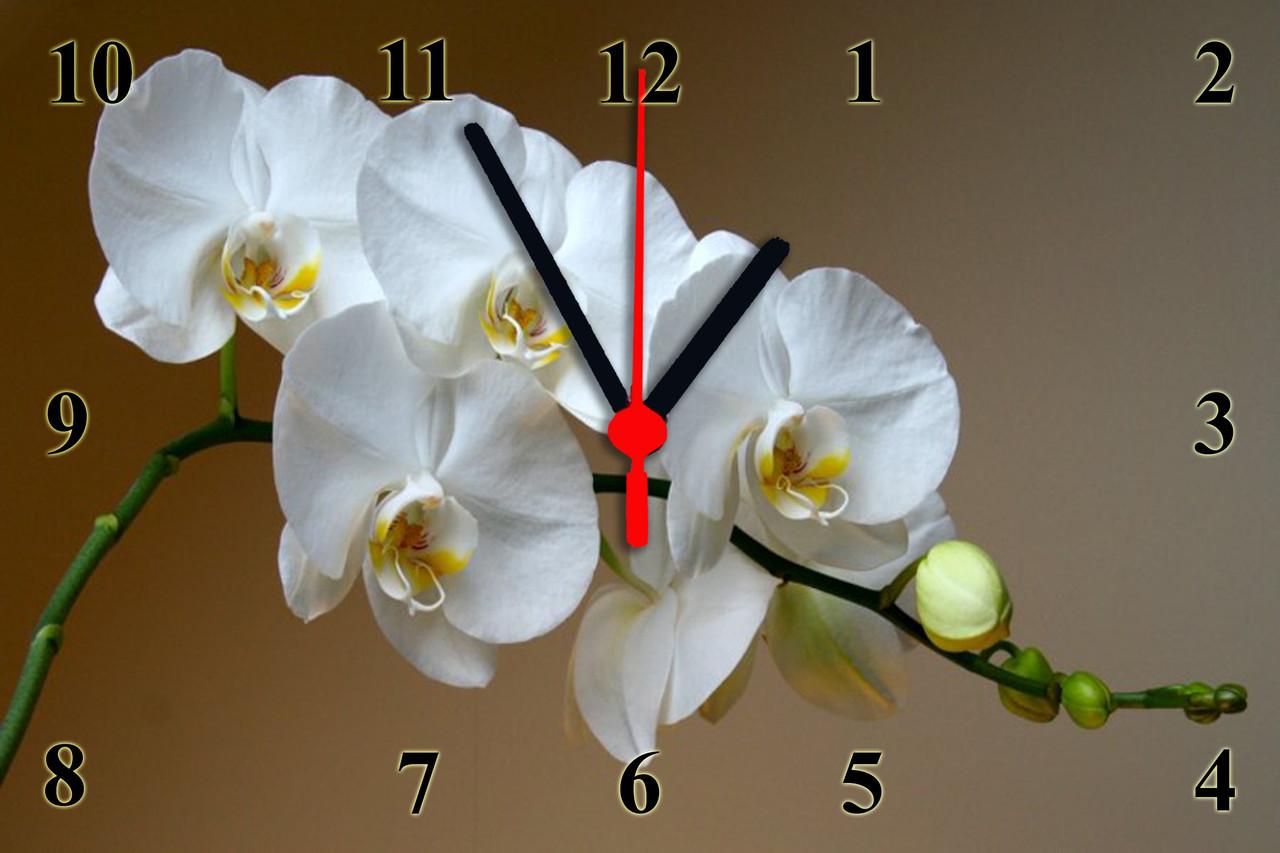 """Часы настенные стеклянные """"Цветок Орхидеи"""""""