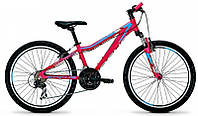 Гірський жіночий велосипед RAVEN ROOKIE 1.0 DONNA (2015)