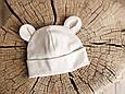 "Набор шапка с манишкой ""Bruin"", бежевая, фото 2"