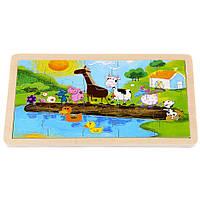 Пазл детский деревянный T22-018