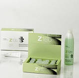 Пилинг против жирных волос Erayba Zen Active Balance Z10b Absorving Mask 8шт*15мл, фото 2