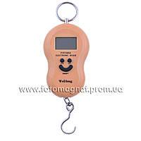 Кантер электронный  50кг 603A-2/512(электронные весы)