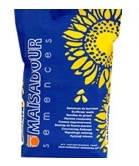 Семена подсолнечника МАС 95 ИР Майсадур под евролайтинг (Mas 95 IR) MAISADOUR SEMENCES