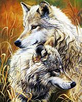 """Набор для рисования картин по номерам """"Пара прекрасных волков"""""""
