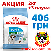 АКЦІЯ Корм Роял Канін Міні Паппі Royal Canin Mini Puppy для цуценят дрібних порід 2 кг + 3 пауча