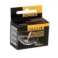 Кнопки никелевые Scholz (50 шт)