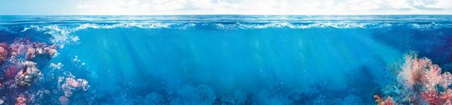 изображение морской глубины для фартука
