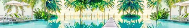 изображение пальмы для кухонного фартука 17