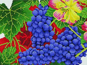 Осенний виноград (EF041)