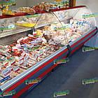 Вітрина холодильна MUZA-2,0 м, випукле скло, фото 4