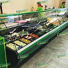 Вітрина холодильна MUZA-2,0 м, випукле скло, фото 3