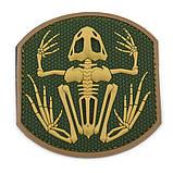 Патч EDC Gear Скелет лягушки, фото 3