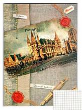 Книга канцелярская (офсетная, 48л, клетка, картонная обложка) (ККР-48)
