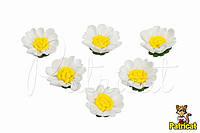 Ромашка белая с желтой серединкой из фоамирана (латекса)10 шт/уп, фото 1