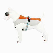 Шлея для собак TUFF HOUND TH00207 Orange XL річна охолоджуюча, фото 3
