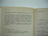 Эйнштейновский сборник. 1980-1981 (б/у)., фото 5