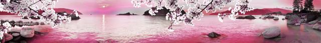 изображение морского побережья для фартука 13