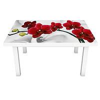 Цветы (наклейки на стол)