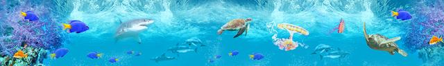 картинка тропических рыбок для фартука 8
