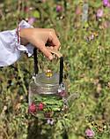 Заварочный чайник Trapeze, фото 7
