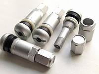 Ниппель, вентиль разборный для литых и стальных дисков (Серебристый матовый)