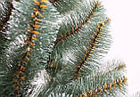 Сосна Буковельська зелена 1 м, фото 2