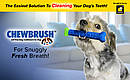 Игрушка для чистки зубов у собак Сhewbrush,Зубная щетка для собак Chewbrush, фото 4