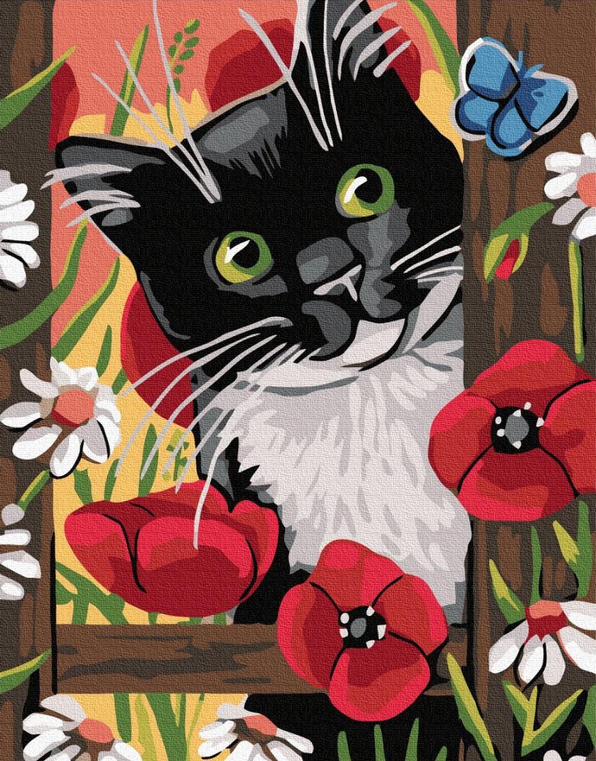 Картина по номерам Brushme Цікавий котик GX32252 40х50см набор для росписи Животные