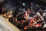 Чавунний піддон для вугілля на газових грилях 38,6 х 37,1 х 4,6 см Napoleon (67731), фото 5