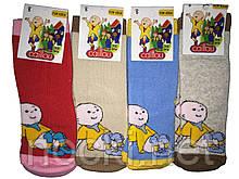 Шкарпетки дитячі теплі махра всередині Туреччина р. 28-30