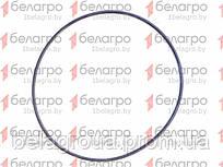 130-135-30-2-2 Кольцо уплотнительное, Беларусь