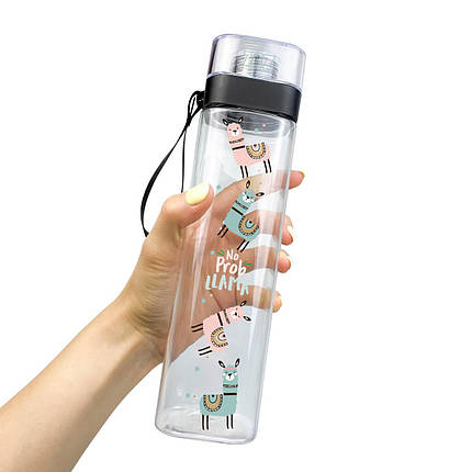 Бутылка для воды ZIZ Не проблема 700мл, фото 2